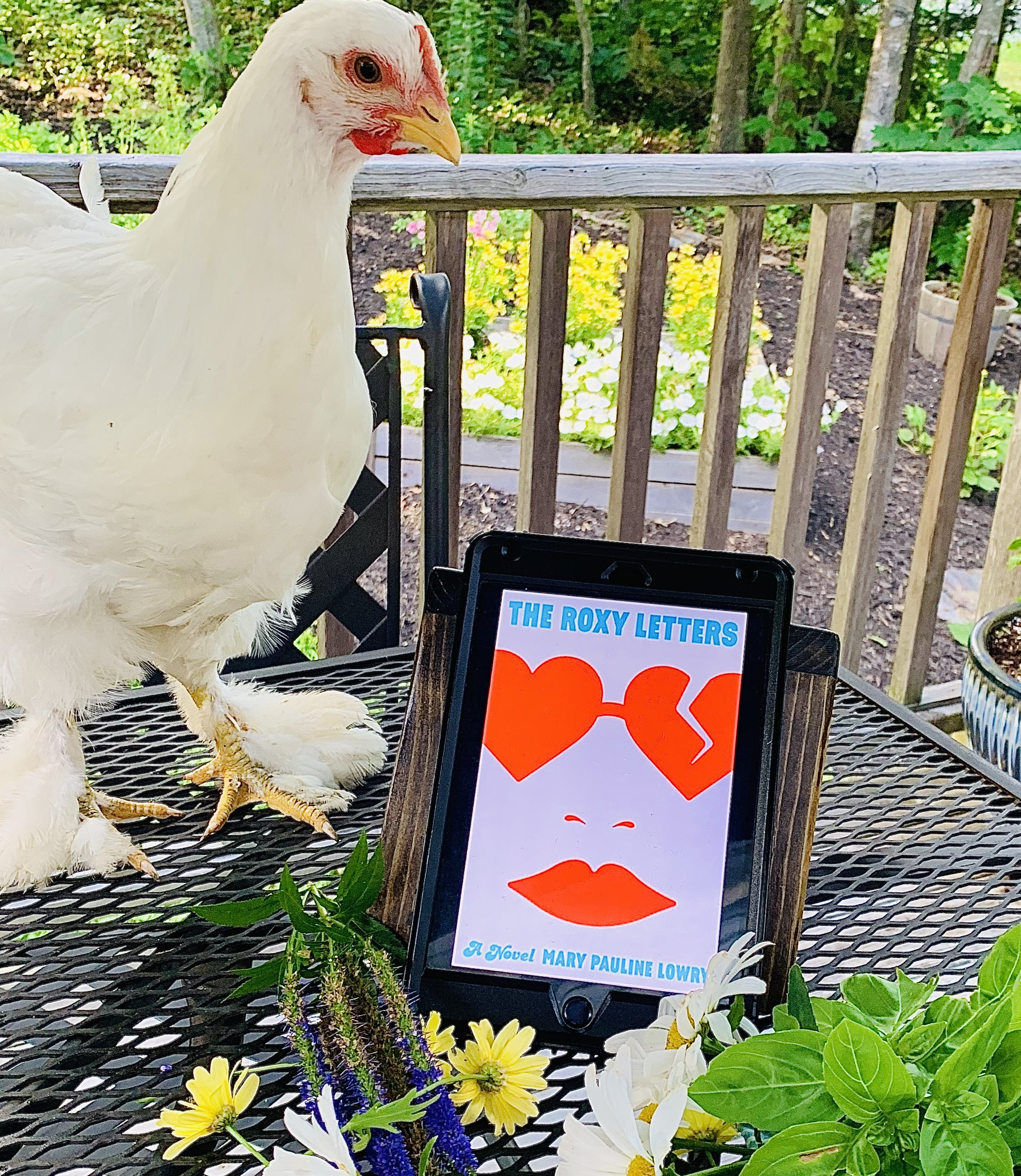 The Roxy Letters Beauty shot with a chicken